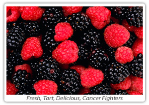 green-tea-hp-5-cancer-fighters-berries